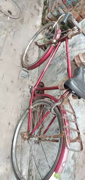 All condition new Hercules cycle