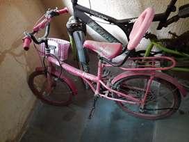 Ladybird cycle BSA