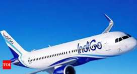 Congrats, Indigo Airline Gives Opportunity For Make future .