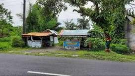 Tanah Luas Murah cck Kafe/Resto di Tepi Jalan Utama Palagan