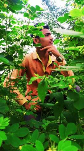 Anil Renuke
