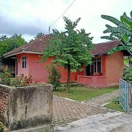 Rumah dijual dekat Bandara Radin Intan (Potensial untuk Kos-Kosan)
