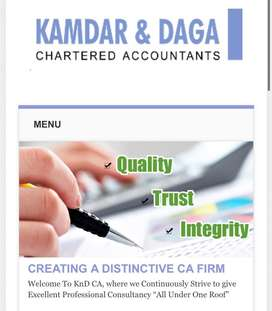 Chartered accountant firm. Required for audit and accounting work.