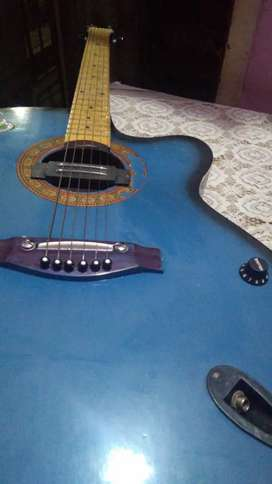 I want to send my guitar