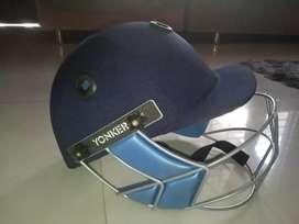 SS brand cricket kit