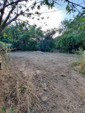 10 cent house plot in Kalapetty, Palakkad