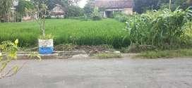 Tanah Pinggir Kota SHM, Jalan Aspal