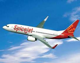 Spicet airlines hiring male /female candidate