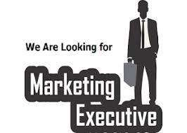 wanted marketing executives for open plot sales