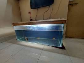 4 feet aquarium tank for sale