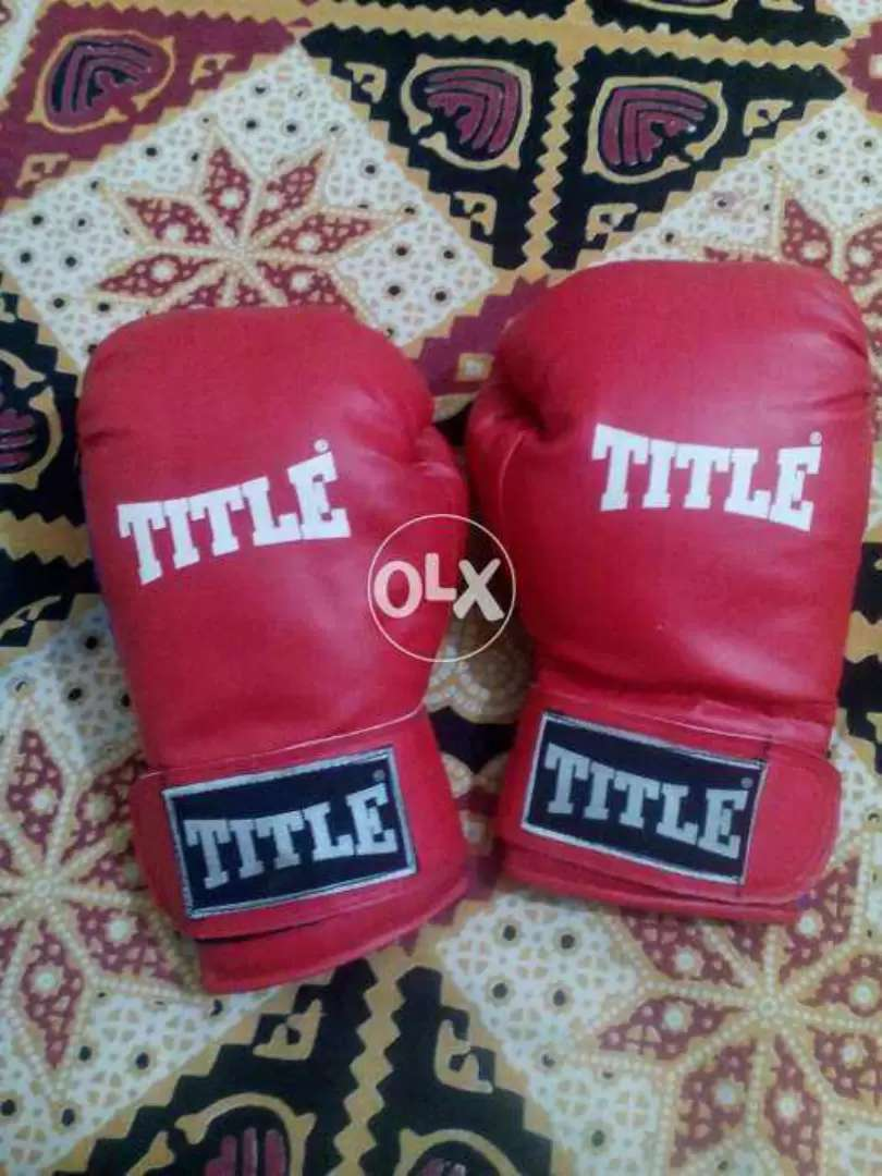 Boxing Gloves with Pad. 0