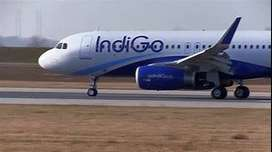 vindigo AIRLINES All India Vacancy opened - Make your career in Domest