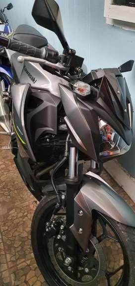 Kawasaki Naked Z250