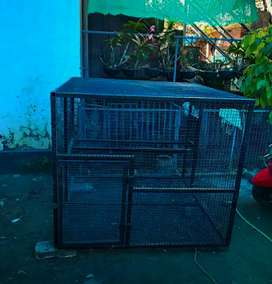 Solid Cage for birds