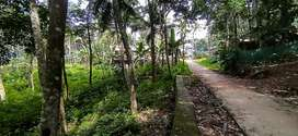 90 cent land at Nedumangad