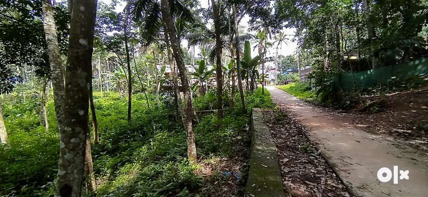 90 cent agricultural land at Nedumangad 0