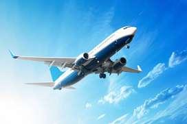 Indigo Airline Job - Airports Huge Recruitment Full Time Jobs