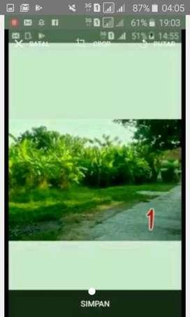 Tangkil Kelayan Cirebon