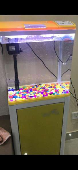 Fish Aquarium with stand