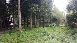 Tanah Murah dan Vila di Pasir Angin Cipayung Datar Mega Mendung Bogor