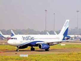 New requirements New vacancy for ground staff in indigo airlines