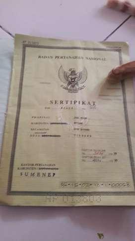 JUAL TANAH SELUAS 241 METER PERSEGI PINGGIR JALAN DESA TORBANG SUMENEP