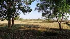 land for sale near vikash vidyalaya neuri