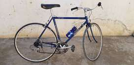 Original sports bicycle ( Panasonic Japan )