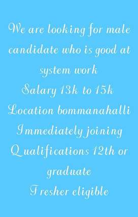 System Work Job Available for Males
