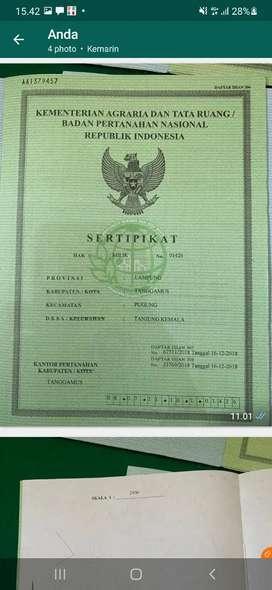 Jual Tanah Kebun Jabon.Luas 5 Ha/SHM di Prov.Lampung.Harga 500 Jt Nego