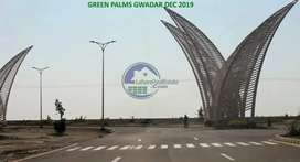 1 kanal plot prime location green palms gwadar