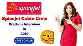 Job Apply in Airlines Hiring job Staff for Various roles & profiles or