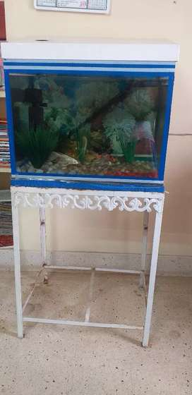 Aquarium with stand for sale