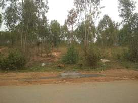40x50  Site near Foundation interantional school