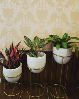 Pot Taman Mewah dan Cantik Handmade Terazzo