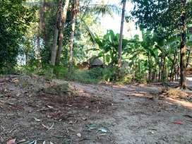 Investasi tanah dengan harga murah seluas 768m2 di Bantul