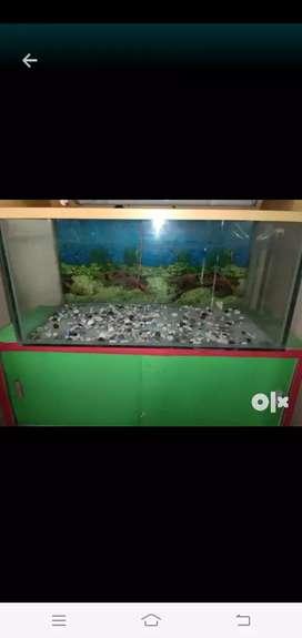 Good condition Aquarium