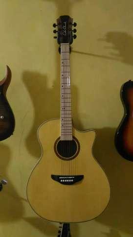 Gitar ColeClark