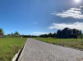 Tanah kavling murah view sawah dekat pantai 20 menit canggu pererenan