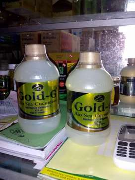 Jelly gamat gold original 100%