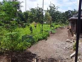 Dijua segeral rumah dan tanah di karangmojo