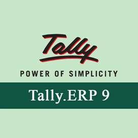 Accountant tally expect
