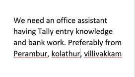 Need accountant and office assistance