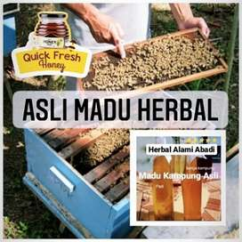 Asli Madu Herbal Madu Kampung Asli Herbal Alami Abadi 500gram