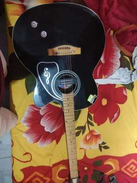 Givson Guitar 8month old