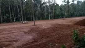 Manarcadu madhavanpady house plots