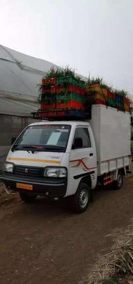 Maruti carry