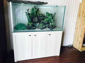 Custom Aquarium | Brand New | Aquarist