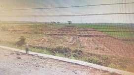 Tanah zona Industri  0 jalan Raya  Ngawi - Caruban Dekat Pintu Tol