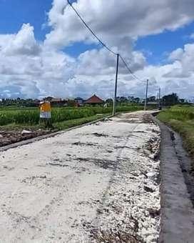 Tanah Kavling dekat Pantai Seseh Rice Field View